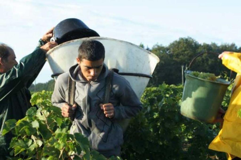2harvest-employee